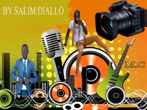 Infographe Africain  SALIM DIALLO