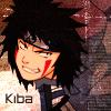 Kiba-Fics