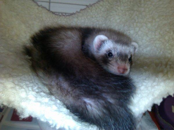 Ma petite Lou <3