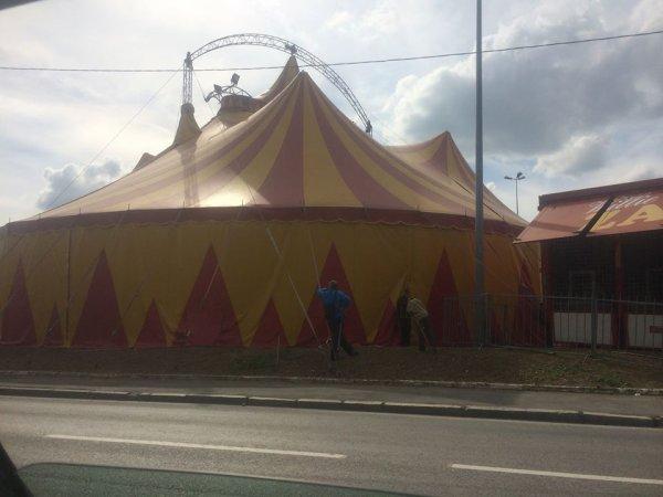 Nouveau reportage ! sur le cirque Willie Zavatta