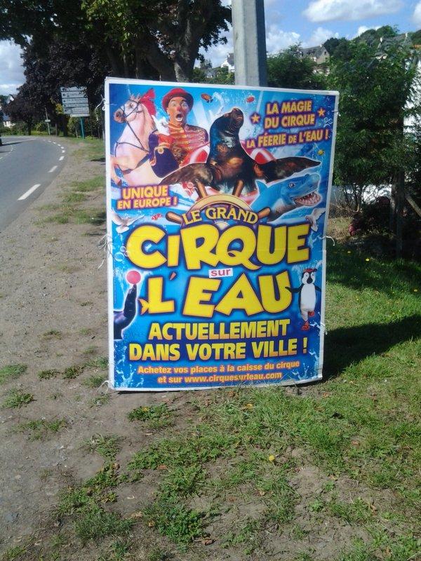 nouveau reportage sur le cirque sur l'eau