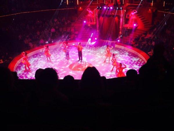 cirque d'hiver le spectacle
