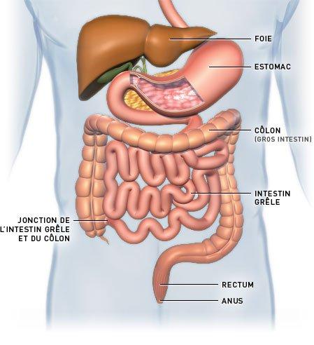 Voici la maladie donc je souffre depuis plus d'1 an, et découverte selement fin avril 2010.