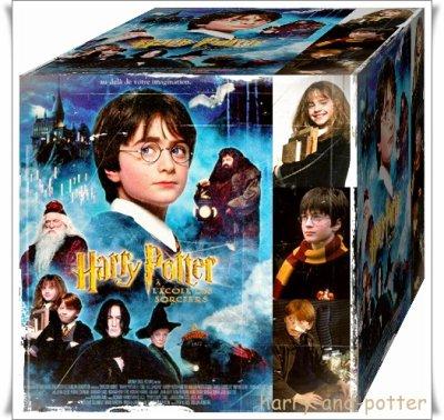 Harry Potter à l'école des sorciers !