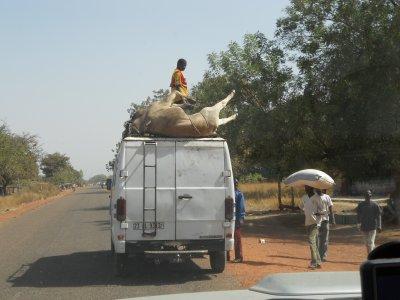 13/01/2012 - Sur la route de Bobo-Dioulasso !