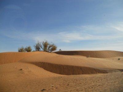 26-01-2012 : Nioro du Sahel