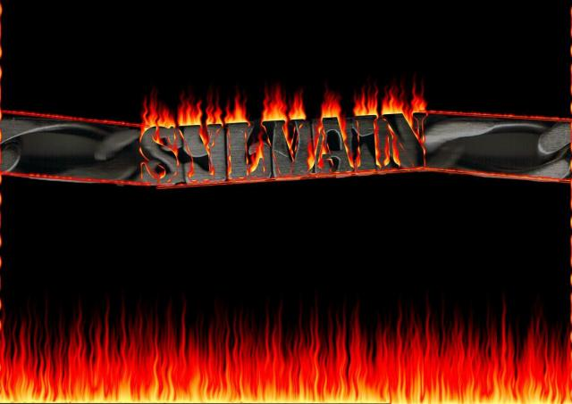 Sylvain700
