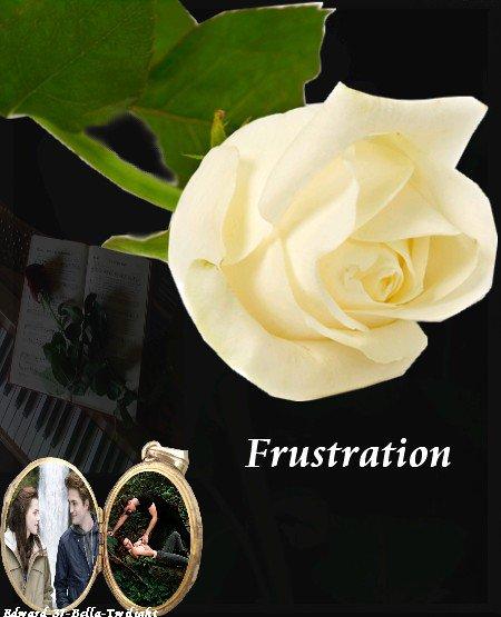 Liste des prévenu pour ma nouvelle fiction: Frustration