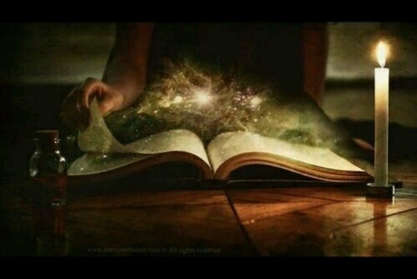Focus sur l'auteur SAVIGNAN