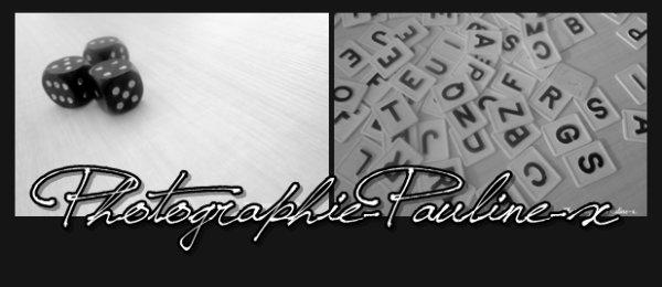 . P h o t o g r a p h i e - P a u l i n e - xInscrite depuis le : 28/06/2012