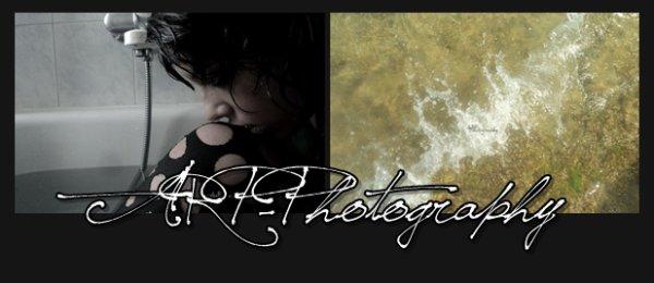 . A R P - P h o t o g r a p h yInscrite depuis le : 28/06/2012