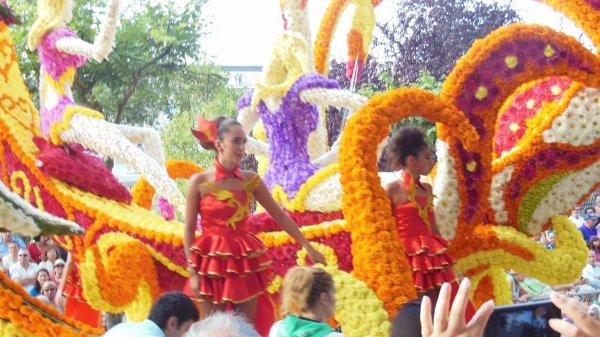 Fête des Fleurs : 30 août 2013 (2ème partie)