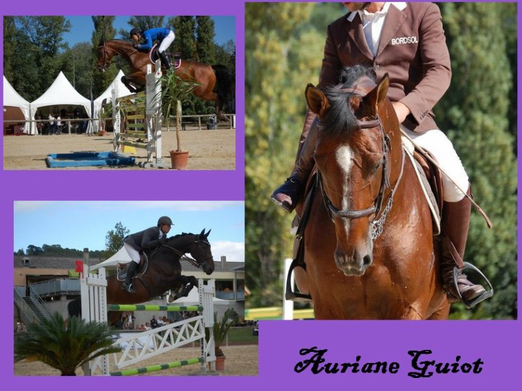 CSO Amateur / Pro - Escadron du Grand Parc