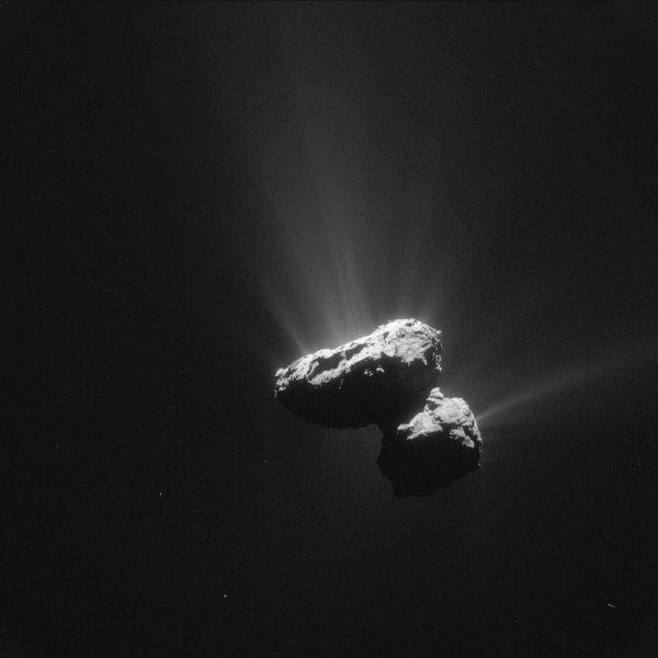 ROSETTA INFO DIRECT : MERCREDI 22 JUILLET 12h UNE NOUVELLE IMAGE de l'activité de la comète 67 p /Churyumov-Gerasimenko prise par la caméra NAVCAM de la sonde ROSETTA ce 14 juillet dernier, à une distance de 161km de la comète !!. (Source ESA-CNES)