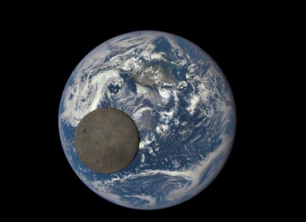 UNE SUPERBE IMAGE EXCEPTIONNELLE !! La face cachée de la Lune passe devant la Terre !! En orbite à 1,5 million de kilomètres de la Terre en direction du Soleil, le satellite DSCOVR a photographié le passage de la Lune devant notre planète. Le 16 juillet dernier, lors de la prise de cette image, la Lune se situait à près de 395 000 kilomètres de la Terre, elle était donc plus proche de DSCOVR et apparaît donc plus grande qu'elle ne l'est réellement par rapport à la Terre. Sur cette photo, la Lune semble 2,7 fois plus petite que la Terre, alors que, dans la réalité, elle est 3,7 fois plus petite (3 476 km de diamètre équatorial contre 12 756 km pour la Terre). (Source: NASA/NOAA)