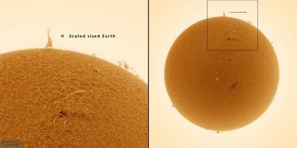 L'IMAGE DU JOUR : UNE TOUR EIFFEL SUR LE SOLEIL !! Le 17 août, une étonnante « tour Eiffel » semblait posée sur le bord du Soleil. Une protubérance haute de 7 fois le diamètre de la Terre a pris pendant plusieurs minutes la forme du célèbre monument parisien. Cette curiosité n'a pas échappé à l'amateur suédois Göran Strand. Après avoir repéré la protubérance avec une lunette solaire de 50 mm, il a remarqué la forme de tour Eiffel et décidé de faire une photo à l'aide d'une autre lunette solaire de 80 mm. Il en résulte ce beau cliché en H-Alpha qui, outre l'éphémère protubérance, révèle avec un luxe de détails la chromosphère foisonnante de notre étoile. (Source AFA)