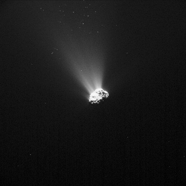 ROSETTA INFO DIRECT : LUNDI 14 SEPTEMBRE 2015 11h30 L'IMAGE DU JOUR : TOUJOURS UNE GROSSE ACTIVITÉ SUR LA COMÈTE TCHURY ! il s'agit bien du noyau de la comète 67/P Churyumov-Gerasimenko, tel que la caméra de navigation NAVCAM de la sonde ROSETTA l'a photographié le 5 septembre dernier depuis une distance de 445 km. (Source ESA-CNES)