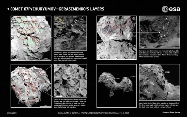 ROSETTA INFO DIRECT : LUNDI 5 OCTOBRE 2015 14h30 LA GENÈSE DE 67P EXPLIQUÉE (Suite) : Ce document de l'ESA montre l'orientation des couches successives sur la comète (flèches) qui résultent de l'action de la gravité. Les différentes orientations ne s'expliquent que si au départ les deux lobes de 67P étaient indépendants. Le noyau autour duquel la sonde Rosetta orbite actuellement est donc le résultat de la collision (à faible vitesse) de deux comètes. Toutefois, l'examen attentif d'images récoltées par Rosetta entre le 6 août 2014 et le 17 mars 2015 montre que 67P est le résultat de la collision à faible vitesse de deux noyaux cométaires autrefois distincts. Scientifique italien associé à la caméra haute résolution OSIRIS de la sonde de l'ESA, Matteo Massironi précise ainsi : «Il est clair à partir des images que les deux lobes ont une enveloppe externe de matériaux organisés en couches distinctes et nous pensons que celles-ci s'étendent jusqu'à plusieurs centaines de mètres sous la surface». Ces couches sont orientées en fonction du champ de gravité. Or, en observant leur orientation sur les deux lobes, on constate que cette orientation ne colle pas avec un noyau unique comme aujourd'hui, mais avec deux noyaux distincts, prouvant, qu'au départ, le petit et le grand lobes se sont formés séparément. Le fait que les différentes couches aient été si bien conservées dans leur orientation indique que la collision a dû se produire avec une faible vitesse relative. En revanche, la similarité structurelle des deux lobes démontre que les deux parties sont issues d'un processus d'accrétion semblable : ils se sont donc formés dans des conditions équivalentes et probablement dans la même région du système solaire. (Sources ESA-CNES-CE)