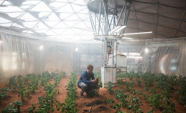 Seul sur Mars : 5 scènes vraisemblables (ou pas) SCENE 4: Des patates sur Mars ? possible, avec des précautions. Le sol martien est peu propice à l'agriculture. « On sait depuis les missions Viking que le sol est extrêmement oxydant, c'est pourquoi on dit que le sol est stérile en surface. » Pour faire pousser des légumes sur Mars, la NASA imagine donc plutôt des cultures hors sol où les plantes seraient directement alimentées en eau et nutriments. Mark Watney est cependant en situation de détresse… Il peut tenter la culture et avoir la chance de réussir si son mélange neutralise la majeure partie des oxydants présents dans le sol martien.      Le sol martien est stérile  Quant à produire de l'eau en faisant brûler l'hydrogène extrait de l'hydrazine, un carburant pour fusée, c'est tout à fait imaginable. « Le problème, c'est que la flamme consomme de l'oxygène, absente sur Mars. Mais j'imagine que Watney a un système de recyclage du CO2 pour en produire. »