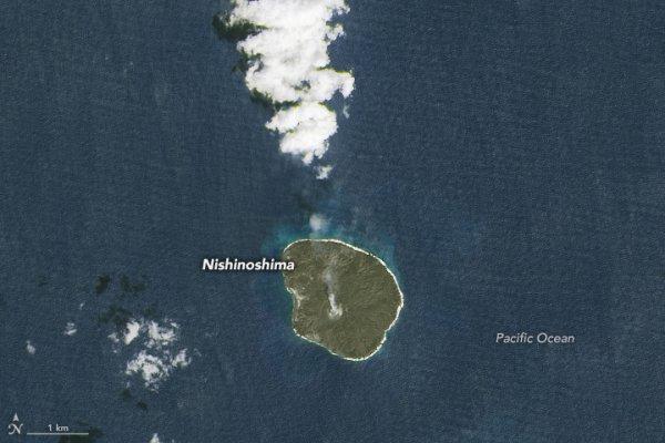 """L'IMAGE DU JOUR : La naissance d'une île !! Il y a deux ans, une nouvelle île, ou """" Nijima,"""" est née dans l'ouest du Pacifique, à environ 1.000 kilomètres (600 miles) au sud de Tokyo. Elle est née à la suite d'une activité volcanique importante à l'intérieur d'une petite île déjà présente. Au cours des deux dernières années, cette nouvelle île a avalé sa voisine, et elle est maintenant douze fois plus grande qu'elle ne l'était il y a deux ans !! (Source NASA EARTH OBSERVATORY)"""