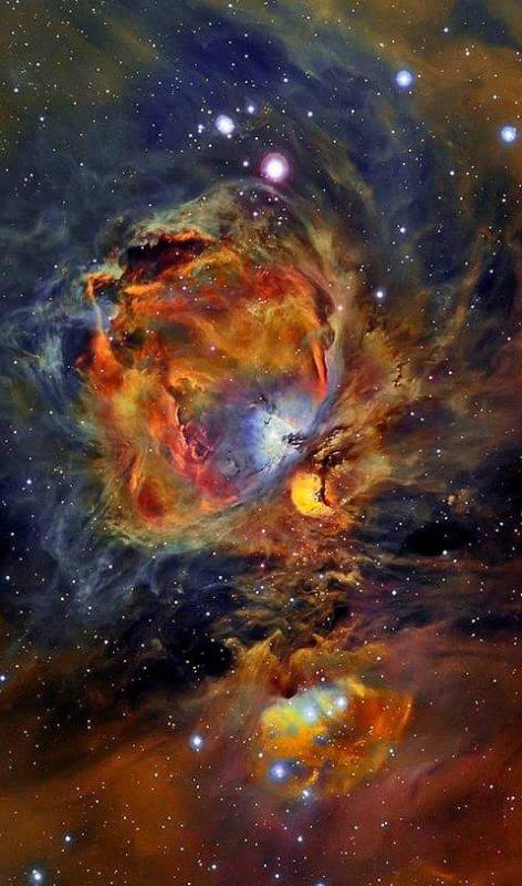 L'IMAGE DU JOUR : Un petit coup d'½il sur la formidable et très belle nébuleuse d'Orion !!