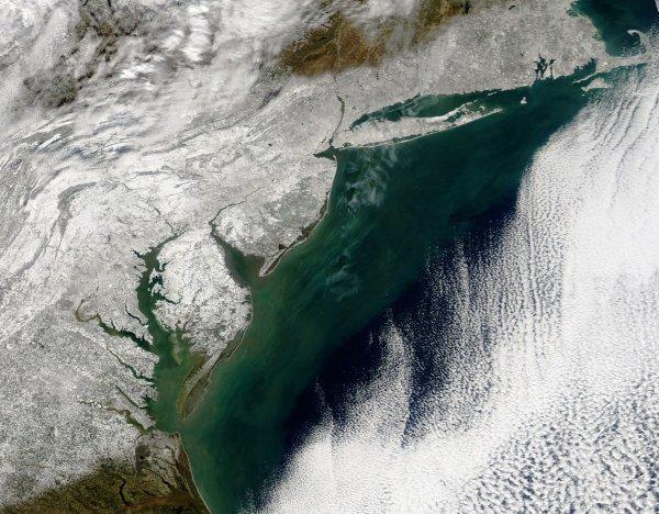 L'IMAGE DU JOUR : SNOWZILLA : la côte est des États-Unis paralysée par la neige! Les chutes de neiges sur la côte est des États-Unis vues par l'instrument MODIS du satellite Aqua dans la journée du 24 janvier 2016. (Sources : NASA / GSFC / ESDIS / MODIS Rapid Response)