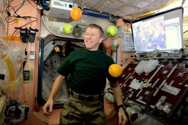 L'IMAGE DU JOUR : Des pommes juteuses dans l'ISS !! L'astronaute de l'ESA, Tim Peake a eu le plaisir de recevoir des fruits frais, avec l'arrivée de ses nouveaux équipiers, du Soyouz et de l'équipage 46, nouvellement arrivée dans la Station Spatiale Internationale. L'ESA et l'Agence spatiale britannique ont établi un partenariat pour développer beaucoup d'activités éducatives passionnantes autour de la mission Principia, visant à susciter l'intérêt des jeunes dans la science et l'espace. (Source ESA)