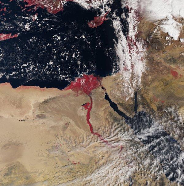 L'IMAGE DU JOUR : UNE VUE DE L'ÉGYPTE PAR LE SATELLITE SENTINELLE 3A ! Cette première image enregistrée le 3 mars 2016, par le satellite Sentinelle 3A, montre le Nil et son Delta avec le désert environnant de l'Afrique du Nord-Est et une partie du Moyen-Orient. Dans le centre de l'image, la capitale Le Caire avec le Nil clairement visible, et la Mer Rouge plus à l'est. Aussi l'île de Chypre plus au nord en mer Méditerranée et les îles de la Crète sur la gauche. Les couleurs de l'instrument nous aident à comprendre l'état de la végétation. Lancé le 16 février dernier, Sentinelle 3A mesure systématiquement les océans, la terre, la glace et l'atmosphère pour contrôler et comprendre la dynamique mondiale à grande échelle. Il fournira des informations essentielles en temps quasi réel pour l'océan et la prédiction de temps, parmi d'autres applications majeures. Sur la terre, cette mission novatrice fournira une plus grande image en contrôlant des feux de forêt, dressant la carte de la façon dont la terre est utilisée, fournissant les indices d'état de végétation et mesurant la hauteur de rivières et des lacs, complétant les mesures haute résolution du précédant satellite Sentinelle 2. (Source ESA)