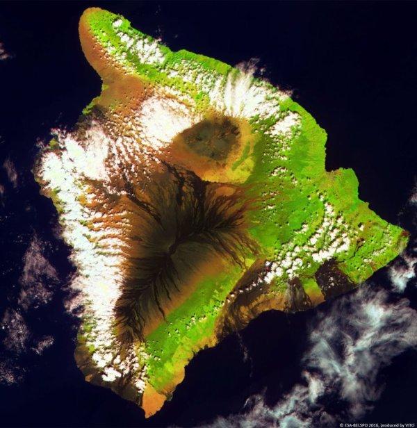 L'IMAGE DU JOUR : Le mini satellite Proba-V de l'ESA a photographié le plus grand volcan de la Terre le Mauna Loa, ou « la longue montagne » qui couvre la moitié de l'île du Hawaii. Le Mauna Loa reste actif. Sa dernière éruption date de 1984. L'Île du Hawaii est formée de cinq volcans en tout. Le Mauna Loa culmine à 4.169 m au-dessus du niveau de la mer et se prolonge sur 5 km au-dessous de la mer. (SOURCE ESA)