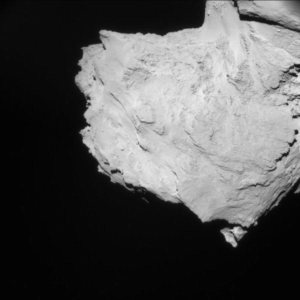 ROSETTA INFO DIRECT : SAMEDI 16 AVRIL 2016 : 9h30 L'IMAGE DU JOUR : Une nouvelle image prise par la caméra NavCam dans la nuit du 9 au 10 avril 2016. La Sonde ROSETTA a exécuté un survol aérien spécial, à 31,4 km du noyau de Comète 67P/Churyumov-Gerasimenko. L'échelle est 2.7 m/pixels et l'image mesure 2.7 km au total. Dans cette configuration, Rosetta pouvait voir la lumière du soleil frapper la comète à angle droit et a donc observé très peu d'ombres sur la surface. L'image montre surtout le petit lobe de comète et la région 'du cou', avec les terrains lisses. On peut aussi apercevoir le début du grand lobe dans le coin supérieur. (Sources ESA-CNES)