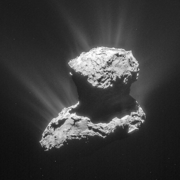"""ROSETTA INFO DIRECT : SAMEDI 28 MAI 2016 : 9h10 DES ÉLÉMENTS FONDAMENTAUX DE LA VIE DÉCOUVERTS SUR LA COMÈTE TCHOURI !! La sonde spatiale ROSETTA a détecté sur la comète Tchouri un acide aminé et du phosphore, deux composants importants de l'ADN, de l'ARN et des membranes cellulaires, a indiqué ce vendredi l'Université de Berne. Ces éléments ont été mis en évidence dans le nuage de poussière et de gaz de la comète 67P/Tchourioumov-Guérassimenko. La découverte a été faite par ROSINA, le spectromètre de masse développé par les chercheurs bernois, qui y avait déjà décelé de l'oxygène et de l'argon. Depuis longtemps, la possibilité que les briques fondamentales de la vie aient été amenées sur Terre par les comètes est discutée. Mais jusqu'ici, seules des traces du plus simple des acides aminés, la glycine, avaient été décelées sur la comète Wild-2 par la NASA, sans pouvoir toutefois exclure une contamination des échantillons. Preuve directe: ROSINA a détecté de la glycine dans la chevelure de Tchouri en octobre 2014, selon ces travaux publiés dans """"Science Advances"""". """"Il s'agit de la première preuve directe de la présence d'acides aminés dans l'atmosphère fine d'une comète !"""" (Sources RTS-ESA-CNES)"""