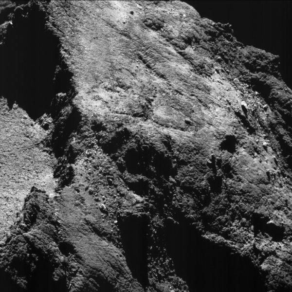 ROSETTA INFO DIRECT : SAMEDI 13 AOÛT 2016 : 10h30 L'IMAGE ET L'INFORMATION DU JOUR : Deux ans se sont écoulés depuis que l'incroyables chasseur de comètes Rosetta de l'ESA est arrivé à la comète 67P / Churyumov-Gerasimenko le 6 Août 2014. Il montre une vue en gros plan d'une partie du petit lobe de la comète, encapsulant une partie de la grande dépression connue sous le nom hatméhyt et ses parois rocheuses abruptes (à gauche), et le contraste du terrain fortement fracturée de ousert (en bas) et Bastet (en haut). Une partie de l'horizon est également capturé, en haut à droite. Pendant ce temps, Rosetta a cartographié cette forme curieuse de la comète et nous a donné des vues impressionnantes de près et de loin, de repérage des changements dans ses caractéristiques de surface et observer comme des jets de gaz et de poussière envoyé dans l'espace, parfois des explosions de façon inattendue et soudaine. Le vaisseau spatial a effectué des audacieux survols et fait des excursions lointaines pour échantillonner le gaz, la poussière et le plasma à une gamme de distances, ce qui donne un aperçu sans précédent dans les processus qui fonctionnent sur la comète et comment ils interagissent avec son environnement. En deux ans, la comète a parcouru environ 1,5 milliard km le long de son orbite autour du Soleil, en passant par son périhélie Août dernier (son approche la plus proche du Soleil) et de montrer le feu d'artifice spectaculaire que son activité a atteint au passage du Soleil. Rosetta fonctionne maintenant à des distances beaucoup plus étroites, comme en témoigne cette image, capturée le 6 Août 2016, à 8,5km de la comète. L'échelle est de 0,7m / pixel et les mesures d'image environ 700m de diamètre. Rosetta vole toujours à côté, la comète se dirige maintenant vers le système solaire externe. La mission palpitante de Rosetta se conclura bientôt dans une grande finale par un impact contrôlé sur la surface de la comète le 30 Septembre. (Sources ESA-CNES)