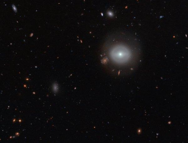 L'IMAGE DU JOUR : Une source solitaire brille remarquablement dans l'étendue sombre de l'espace profond, étincelant doucement, contre une toile de fond pittoresque de lointaines étoiles et galaxies colorées. Capturée par la Camera du télescope spatial HUBBLE, cette photo montre PGC 83677, une galaxie lenticulaire, un type de galaxie qui se trouve entre les variétés spirales et elliptiques. Cette image révèle à la fois, la périphérie relativement calme et le noyau fascinant de PGC 83677. (Sources : ESA-Hubble-NASA)