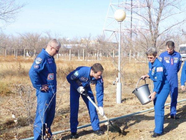 MISSION PROXIMA avec Thomas PESQUET : 11 Novembre 2016 Nouvelle cérémonie à quelques jours du grand départ pour Thomas : avant leur premier vol en Soyouz, tous les astronautes doivent planter un arbre. Peggy et Oleg, qui ont déjà le leur, l'ont aidé à respecter cette tradition. En tout cas, « l'allée des cosmonautes » est désormais bordée de centaines d'arbres, comme autant d'astronautes partis de Baïkonour. Les arbres les plus grands correspondent bien sûr aux missions les plus anciennes. (Sources ESA-TP)