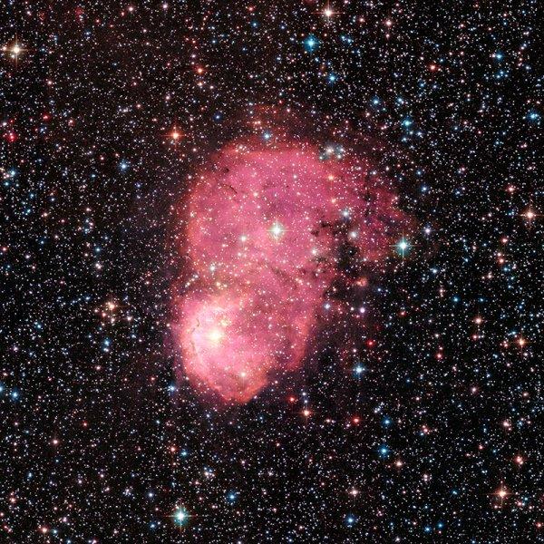 L'IMAGE DU JOUR : Cette photo de la nébuleuse NGC248, dans le Petit Nuage de Magellan, a été prise par le télescope spatial Hubble. En fait, cette galaxie naine compte 5 à 10 fois moins d'atomes lourds que notre galaxie, la Voie lactée. Elle est donc à un stade d'évolution plus primitif. C'est une aubaine car, le Petit Nuage de Magellan se trouvant dans la proche banlieue de notre grande spirale, il peut être étudié en détail. NGC 248 est un vaste nuage de gaz et de poussière. Il mesure 60 années-lumière par 20. Une taille à comparer avec les 33 années-lumière de la Grande Nébuleuse d'Orion, située dans notre galaxie. À l'intérieur naissent de nouvelles étoiles et leur lumière électrise le gaz alentour, qui devient ainsi luminescent. (Sources C&E-ESA-NASA-HUBBLE)