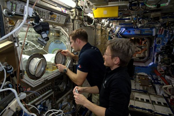 MISSION PROXIMA avec Thomas PESQUET : 7 Mars 2017. LA STATION SPATIALE INTERNATIONALE regorge d'équipements scientifiques de premier choix : La « boîte à gants » Européenne est en service depuis plus de dix ans et est utilisée en ce moment pour l'étude des cellules souches, un domaine prometteur de la médecine. Entre deux séances, les astronautes ont remplacé la vitre par une neuve, dont les propriétés ont été améliorées. Cette « boîte à gants » les assure que certaines expériences restent confinées à une atmosphère séparée de celle de la station. Histoire de les protéger de substances nocives, mais aussi de protéger des échantillons fragiles des astronautes et de leurs bactéries ! Elle est utilisé pour des expériences de physique des fluides, de biotechnologie, et pour en apprendre plus sur le comportement des flammes en apesanteur, il leur arrive même d'y allumer un feu, qui brûle alors en une boule bleue très photogénique ! (Sources ESA-TP)