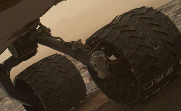 L'IMAGE DU JOUR : DES NOUVELLES DE CURIOSITY SUR MARS ! Les roues du rover martien Curiosity montrent de nouveaux signes inquiétants de faiblesse. Suite à une erreur de conception, des trous sont rapidement apparus sur ces roues en alu. Depuis janvier 2017, les reliefs sur les roues permettant l'adhérence commencent eux aussi à montrer des signes de faiblesse. En particulier, deux de ceux présents sur la roue du milieu côté gauche sont cassés. Cette nouvelle faiblesse marque une étape dans l'usure du rover, qui arpente le sol de Mars depuis l'été 2012. Des tests conduits sur Terre ont en effet montré que, si trois de ces sculptures sont cassées, la roue a atteint 60 % de son espérance de vie. Or, Curiosity a déjà effectué plus de 60 % du parcours initialement prévu. (Sources NASA-C&E)