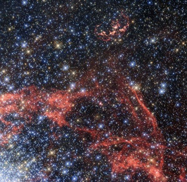 L'IMAGE DU JOUR : LA SUPERNOVA N103B. Cette image, prise avec le télescope spatial HUBBLE, présente la supernova connue sous le nom de N103B (en haut de l'image) et située dans le grand nuage de Magellan, une galaxie voisine de la voie lactée, et visible dans l'hémisphère Sud. En raison de sa proximité relative à la Terre, les astronomes observent le reste pour rechercher un survivant stellaire potentiel de l'explosion. Les filaments orange-rouge visibles dans l'image montrent les fronts de choc de l'explosion de la supernova. Ces filaments permettent aux astronomes de calculer le centre original de l'explosion. Les filaments montrent également que l'explosion ne se développe plus comme une sphère, mais qu'elle est en forme elliptique, ce qui suppose qu'une partie du matériau éjecté par l'explosion a frappé un nuage plus dense de matière interstellaire, et qui ralentit sa vitesse. La coque du matériau en expansion étant ouverte sur un côté supporte cette idée. (Sources ESA-NASA-HUBBLE)