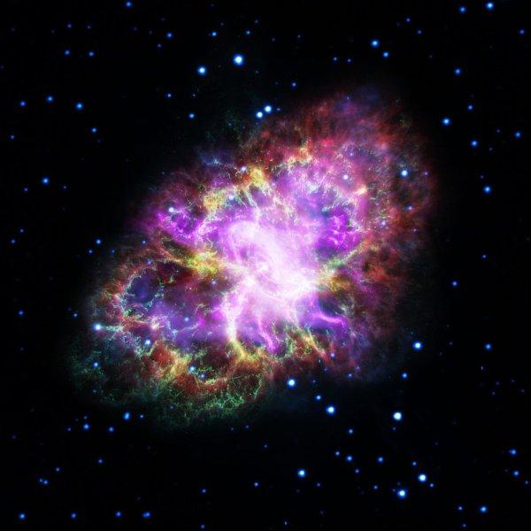 L'IMAGE DU JOUR : LA NÉBULEUSE DU CRABE ! Cette nouvelle image inhabituelle a été produite en combinant les données des télescopes couvrant presque tout le spectre électromagnétique, des ondes radio aux rayons X. Le Very Large Array (VLA) image radio (coloré en rouge). Le Télescope SPITZER de la NASA a pris des images dans l'infrarouge (jaune). Le télescope spatial spatial HUBBLE a fourni les images réalisées en longueurs d'ondes optiques (colorées en vert). Le télescope XMM-Newton de l'ESA a observé la nébuleuse de crabe dans l'ultraviolet (bleu) et l'Observatoire des rayons X de Chandra de la NASA fournit les données pour le rayonnement X (pourpre). La nébuleuse de crabe, située à 6500 années-lumière de la Terre dans la constellation du Taureau, est le résultat d'une explosion de supernova qui a été observée par les astronomes chinois en 1054. Au centre, un pulsar : une dense étoile neutronique, tournant sur elle-même tous les 33 millisecondes, en produisant un faisceau de lumière visible. Entourant le pulsar se trouve un mélange de matériau expulsée à l'origine de la supernova. Les vents rapides de particules sortant de l'étoile neutronique, alimente de poussière et le gaz autour de celle-ci. Ces différentes couches et complexités de la nébuleuse peuvent être observées sur cette image ! (Sources NASA-HUBBLE-VLA-SPITZER-ESA)
