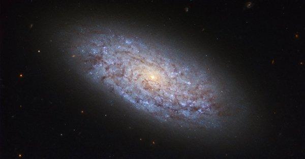 L'IMAGE DU JOUR : PETITE MAIS SIGNIFICATIVE ! Le sujet de cette photo du satellite Spatial HUBBLE est la galaxie naine nommée NGC 5949. Grâce à sa proximité à la Terre, elle se trouve à une distance d'environ 44 millions d'années-lumière de nous, en la plaçant dans le quartier cosmique de la Voie lactée - NGC 5949 est une cible parfaite pour les astronomes. Avec une masse d'environ un centième de la Voie lactée, NGC 5949 est un exemple relativement volumineux d'une galaxie naine. Sa classification en naine est due à son nombre relativement restreint d'étoiles, mais les bras spiralés légalement liés à la Galaxie la placent également dans la catégorie des spirales barrées. Cette structure est juste visible dans cette image, ce qui montre la galaxie comme un pignon volumineux mais mal défini. Malgré ses petites proportions, la proximité de NGC 5949 a permis que sa lumière soit capturée par des télescopes assez petits, ce qui a facilité sa découverte par l'astronome William Herschel en 1801. (Sources NASA-HUBBLE-ESA)