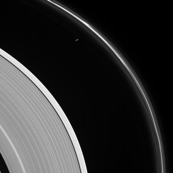 L'IMAGE DU JOUR : ANNEAUX DE SATURNE ET SON SATELLITE « PROMETHEE ». La mission internationale de la sonde Cassini se termine spectaculairement en concluant son odyssée de 13 ans dans le système de Saturne, et en plongeant entre Saturne et ses anneaux et en découvrant un territoire inexploré comme jamais auparavant ! L'ensemble définitif de cinq plongées immerge même l'engin spatial vers le haut de l'atmosphère de Saturne, ce qui donne aux instruments de Cassini la possibilité de faire le premier échantillonnage direct de la planète, d'étudier sa composition chimique et d'analyser sa température à différentes altitudes. Les plongées fourniront également des images rapprochées des caractéristiques atmosphériques de la planète, y compris son vortex et ses aurores polaires. L'image capturée lors d'une plongée entre la planète et ses anneaux, à environ 1,1 million de kilomètres de Saturne, montre le mince morceau de la Prometheus à 86 km de Saturne qui se cache à proximité de structures fantômes et des caractéristiques faibles de l'anneau résultent de ses interactions gravitationnelles avec Prometheus. La plupart de la surface de la petite lune est dans l'obscurité en raison de la géométrie de l'observation : Cassini était positionnée derrière Saturne et Prométhée par rapport au Soleil, regardant vers le côté sombre de la lune et juste un peu de l'hémisphère nord éclairé par la lune. Le détail dans le côté éclairé par le soleil des anneaux montre une nette différence de luminosité entre la section la plus extérieure de l'anneau A de Saturne (à gauche du centre) et le reste de l'anneau, l'intérieur (en bas à gauche). (Sources NASA-CASSINI-ESA)