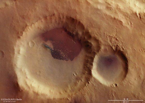 L'IMAGE DU JOUR : CHAMP DUNE DANS UN CRATERE SUR MARS ! Vue aérienne donnant sur un champ de dunes soufflé par le vent dans un cratère d'impact sans nom de 48km de large dans les hauts plateaux du sud de Mars. Un petit cratère à droite accueille également des dunes. Les images ont été acquises par la caméra stéréo haute résolution sur MARS EXPRESS. La résolution au sol est d'environ 13m/pixel. Le nord se trouve à droite. (Source ESA)