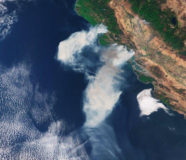 L'IMAGE DU JOUR : LES FEUX TRÈS IMPRESSIONNANT EN CALIFORNIE ! Le satellite Copernic Sentinel-3A a capturé cette image de fumée provenant des feux de forêt dans l'État de Californie. Des incendies de forêt ont éclaté dans certaines parties de l'état depuis le 8 octobre 2017 autour de Napa Valley, et la fumée a été propagée par de forts vents du nord-est. (Source ESA)