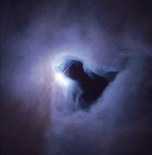 L'INFO ASTRO JOUR : NÉBULEUSE DE RÉFLEXION NGC 1999. Ce spectacle effrayant, photographié par le télescope spatial HUBBLE, ressemble à du brouillard éclairé par un lampadaire tourbillonnant autour d'un trou de forme curieuse, et il y a une part de vérité là-dedans. Alors que le «brouillard» est de la poussière et du gaz éclairé par l'étoile, le «trou» est vraiment une parcelle de ciel vide. Lorsque le tache sombre a été photographiée pour la première fois, il a été supposé être un nuage de gaz et de poussière très froid et dense, si épais qu'il était totalement opaque à la lumière visible et bloquant toute la lumière derrière lui. En général, de tels globules sont connus pour être de petits cocons d'étoiles formatrices, mais grâce à l'observatoire spatial Herschel de l'ESA, qui aurait pu voir des indices de formation d'étoiles aux longueurs d'onde infrarouges, mais pas avec des observations au sol, s'est avéré être une parcelle de ciel vraiment vide ! Les astronomes pensent qu'il s'est formé lorsque des jets de gaz de certaines des jeunes étoiles de la région plus large ont percé la nappe de poussière et de gaz qui forme la nébuleuse environnante. Le puissant rayonnement d'une étoile mature proche peut aussi avoir aidé à dégager le trou. L'étoile brillante vue ici est V380 Orionis, une jeune étoile 3,5 fois la masse de notre propre Soleil. Elle apparaît blanche en raison de sa température de surface élevée d'environ 10.000ºC - près de deux fois celle du soleil. L'étoile est si jeune qu'elle est encore entourée d'un nuage de matière laissé par sa formation. Ce matériau brillant dans la zone illustrée ici n'est visible qu'à cause de la lumière de l'étoile; il n'émet aucune lumière visible. C'est la signature d'une «nébuleuse de réflexion» - celle-ci est connue sous le nom de NGC 1999. (Sources NASA-HUBBLE-ESA)