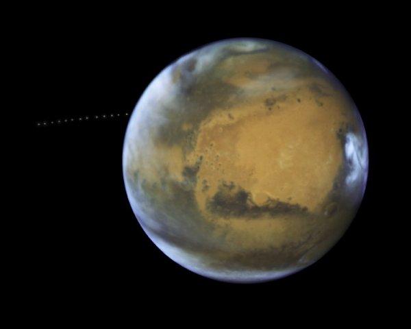 L'IMAGE ASTRO DU JOUR : PHOBOS EN ORBITE AUTOUR DE MARS ! L'½il vif du télescope spatial HUBBLE de la NASA a capturé la petite lune PHOBOS lors de sa randonnée orbitale autour de MARS. Au cours de 22 minutes, Hubble a pris 13 expositions différentes, permettant aux astronomes de créer une vidéo en accéléré montrant le mouvement de Phobos autour de sa planète hôte. Parce que la lune est si petite, juste 27 × 22 × 18 km, elle apparaît comme une étoile dans les images. PHOBOS est également en orbite autour de Mars, à seulement 6000 km au-dessus de la planète, ce qui le rend plus proche de sa planète mère que toute autre lune du système solaire. Sa Lune jumelle DEIMOS en orbite beaucoup plus loin, à quelque 23.500km. Alors que l'origine des lunes est très débattue, leur destin est inévitable. Phobos se dirige progressivement vers Mars et dans les 50 millions d'années, il se cassera probablement en raison de la gravité de la planète, ou s'écrasera sur sa surface. Pendant ce temps, le contraire est vrai pour Déimos: son orbite l'éloigne lentement de Mars. (Source ESA-NASA-HUBBLE)