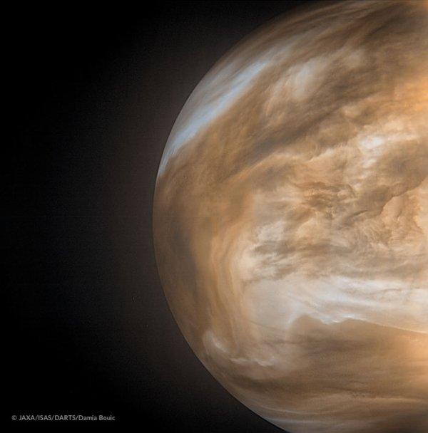 L'IMAGE ASTRO DU JOUR : LA SONDE JAPONAISE AKATSUKI a obtenu des vues spectaculaires de la plus proche planète de la Terre qui renouvellent l'image de ce monde perpétuellement voilé par les nuages de son épaisse atmosphère. Les images de Vénus sont rares. Et pour la plupart, anciennes. C'est sans compter sur la sonde japonaise Akatsuki, en orbite autour de Vénus, et de Damia Bouic, amatrice passionnée d'imagerie planétaire, qui a appliqué aux photos d'Akatsuki un traitement particulier en donnant à l'image une coloration artificielle, afin d'obtenir ce résultat sublime. On observe ici le côté nuit de la planète, qui ne réfléchit donc pas la lumière du Soleil, mais émet sa propre lumière infrarouge par rayonnement thermique. L'image révèle également des détails de la météo vénusienne, déjà connue pour sa couverture nuageuse et son fort effet de serre qui fait grimper la température à plus de 460°C à sa surface. La sonde Akatsuki (aube en japonais), unique orbiteur actif de Vénus, revient pourtant de loin. Sa mise sur orbite, initialement prévue en 2010, avait d'abord échoué pour finalement réussir cinq ans plus tard. La sonde avait dû longuement patienter sur une orbite héliocentrique jusqu'à sa deuxième chance de rendez-vous avec la planète. (Sources Jaxa/Isas/DARTS/Damia Bouic)