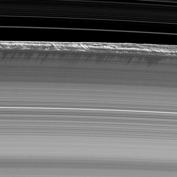 L'INFO ASTRO & L'IMAGE DU JOUR : LES PICS DE L'ANNEAU DE SATURNE, PAR LA SONDE CASSINI, à 1.658 millions de km de la Terre ! Ces pics duveteux sont parmi les plus hauts observés dans les anneaux principaux de Saturne, s'élevant jusqu'à 2,5 km au-dessus du plan des anneaux, qui est généralement d'environ 10m. Ils se lèvent brusquement du bord de l'anneau dit « B » pour projeter de longues ombres dans cette image. Mais ces montagnes sont loin d'être solides: elles modifient constamment les accumulations de particules de l'anneau qui répondent à la gravité des lunes et des formations ondulatoires induites dans les anneaux. Une partie de la division Cassini, entre les anneaux B et A, apparaît en haut de l'image, montrant des anneaux dans la division interne. Il s'agit d'une région importante sur le bord extérieur de l'anneau B. Cette image a été prise par l'appareil photo à angle étroit de la sonde CASSINI. Cette vue a été acquise à une distance de 336.000km de Saturne. L'échelle de l'image est de 2km/pixel et l'image capture un arc de section de 1200 km le long du bord extérieur de l'anneau B.(Source ESA-NASA-JPL-CASSINI)