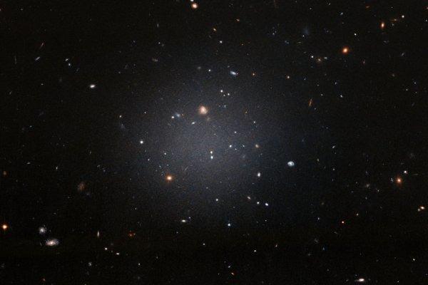 L'IMAGE & L'INFO ASTRO DU JOUR : UNE GALAXIE FANTOMATIQUE DÉPOURVUE DE MATIÈRE NOIRE PHOTOGRAPHIE PAR HUBBLE ! NGC 1052-DF2 réside à environ 65 millions d'années-lumière dans le groupe NGC 1052, dominé par une galaxie elliptique massive appelée NGC 1052. Cette grande galaxie à l'apparence floue est si diffuse que les astronomes peuvent voir clairement les galaxies lointaines derrière elle. Cette galaxie fantomatique ne ressemble pas à une galaxie spirale typique, mais elle ne ressemble pas non plus à une galaxie elliptique. Basé sur les couleurs de ses amas globulaires, la galaxie a environ 10 milliards d'années. Cependant, même les amas globulaires sont étranges: ils sont deux fois plus grands que les groupes d'étoiles typiques. Toutes ces bizarreries pâlissent par rapport à l'aspect le plus étrange de cette galaxie: NGC 1052-DF2 manque la plupart, sinon la totalité, de sa matière noire. La galaxie ne contient qu'une infime fraction de matière noire que les astronomes attendraient d'une galaxie de cette taille. Mais comment elle s'est formé reste un mystère complet ! (Sources NASA-HUBBLE-ESA)