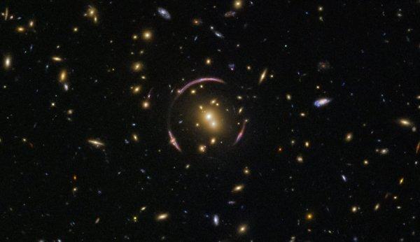 L'IMAGE & L'INFO ASTRO DU JOUR : CLONAGE COSMIQUE ! Cette image est pleine de galaxies! Un ½il vif peut repérer des elliptiques exquis et des spirales spectaculaires, vus à diverses orientations. La grande majorité de ces points sont des galaxies, mais pour repérer une étoile de premier plan de notre propre galaxie, vous pouvez rechercher un point de lumière avec des pointes de diffraction révélatrices. Le sujet le plus séduisant se trouve au centre du cadre. Avec le nom charmant de SDSSJ0146-0929, le renflement central lumineux est un amas de galaxies - une collection monstrueuse de centaines de galaxies toutes enchaînées dans l'étreinte inébranlable de la gravité. La masse de cette grappe de galaxies est assez grande pour déformer sévèrement l'espace-temps qui l'entoure, créant des courbes, en boucle, qui entourent presque la grappe. Ces arcs gracieux sont des exemples d'un phénomène cosmique connu sous le nom d'anneau d'Einstein. L'anneau est créé comme la lumière d'un objet lointain, comme les galaxies, passe par une masse extrêmement grande, comme cette grappe de galaxies. Dans cette image, la lumière d'une galaxie de fond est détournée et déformée autour de la grappe intermédiaire et obligée de voyager le long de nombreux chemins lumineux vers la Terre, donnant l'impression que la galaxie est à plusieurs endroits à la fois. (Sources NASA-HUBBLE-ESA)