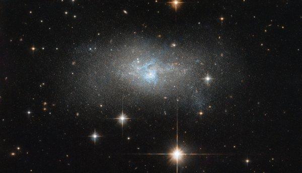 L'IMAGE & L'INFO ASTRO DU JOUR : Une ondulation de fils bleus vifs à travers cette galaxie comme un système lacustre déformé ! Le premier plan de cette image est jonché d'étoiles proches avec leurs pointes de diffraction étincelantes. Un ½il vif peut également apercevoir quelques autres galaxies qui, tout en se faisant passer pour des étoiles à première vue, révèlent leur véritable nature en y regardant de plus près. La galaxie centrale striée de couleur, IC 4870, a été découverte par DeLisle Stewart en 1900 et est située à environ 28 millions d'années-lumière. Elle contient un noyau galactique actif, ou AGN: une région centrale extrêmement lumineuse si lumineuse qu'elle peut éclipser le reste de la galaxie. Les AGN émettent des rayonnements sur l'ensemble du spectre électromagnétique, des ondes radio aux rayons gamma, produits par l'action d'un trou noir supermassif central qui dévore le matériau en s'approchant trop. IC 4870 a été photographiée par HUBBLE pour plusieurs études de galaxies actives à proximité. En utilisant HUBBLE pour explorer les structures à petite échelle d'AGN dans les galaxies voisines, les astronomes peuvent observer les traces de collisions et de fusions, barres galactiques centrales, explosions d'étoiles nucléaires, jets ou sorties, et autres interactions entre un noyau galactique et son environnement. Des images comme celles-ci peuvent aider les astronomes à mieux comprendre la vraie nature des galaxies que nous voyons dans le cosmos. (Sources NASA-HUBBLE-ESA)